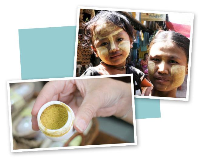 Polvo de sándalo de Birmania que las mujeres utilizan para pintarse la cara con él, ya que les protege milagrosamente de las inclemencias solares