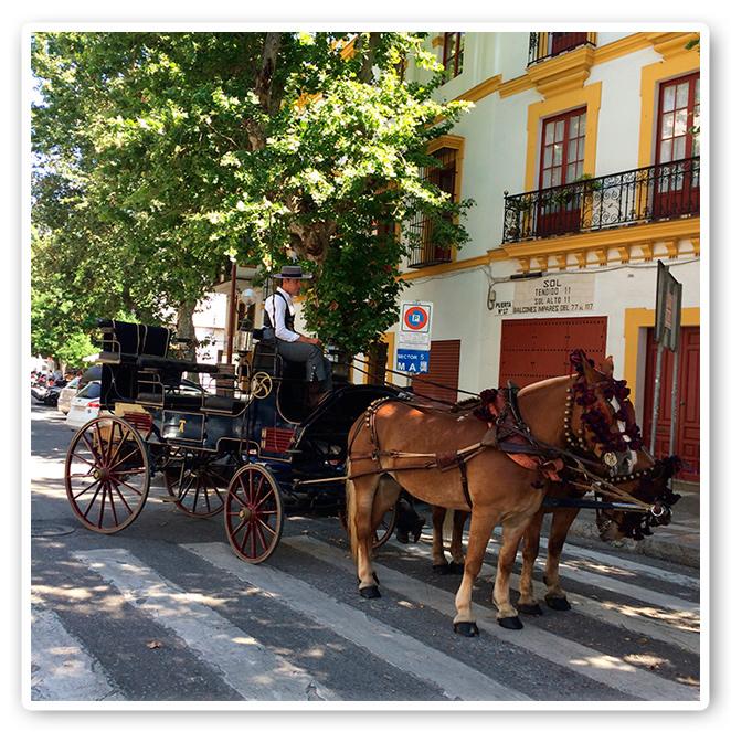 Calesa descansando a la sombra en la Feria de Sevilla 2014