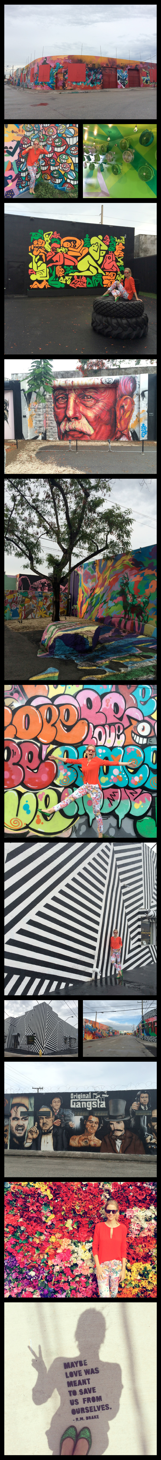 El barrio de Wynwood donde se pueden admirar paredes con espectaculares graffitis.