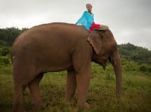 Una experiencia inolvidable entre elefantes