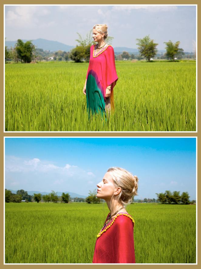Preciosos arrozales - Chiang Rai