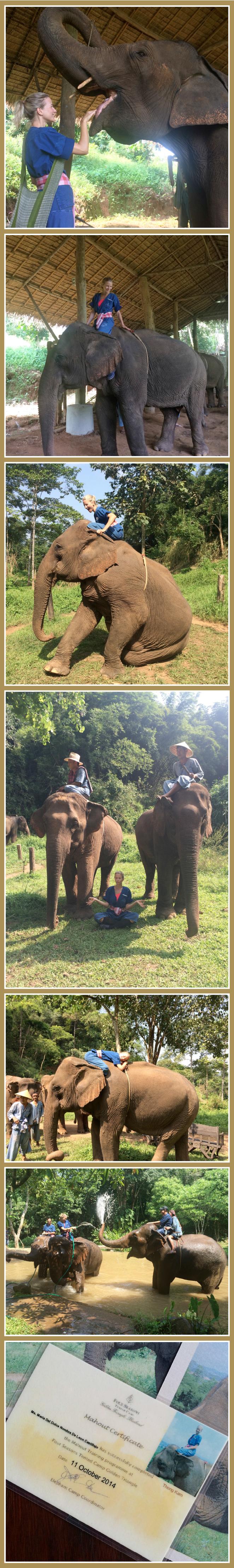 María León y su elefante Thong Kam y su Mahou Berm