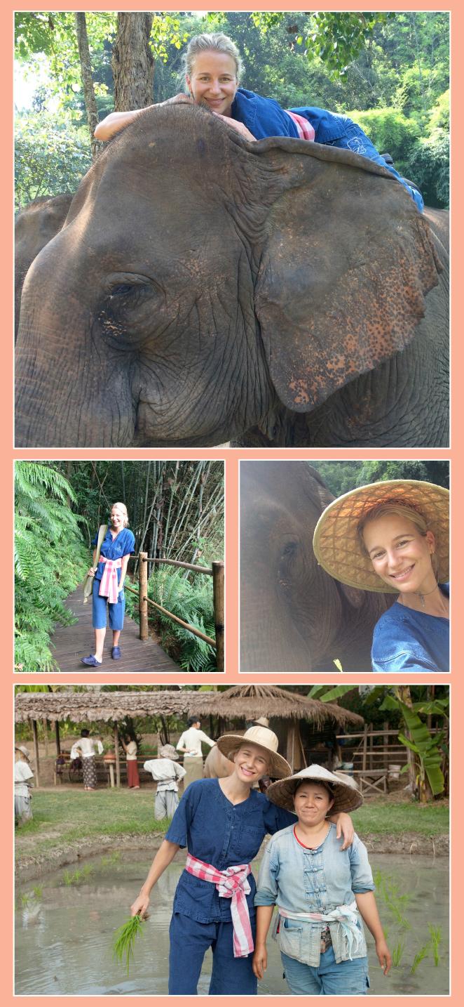 LOOK 12: Preparada para entrenar a elefantes y plantar arroz
