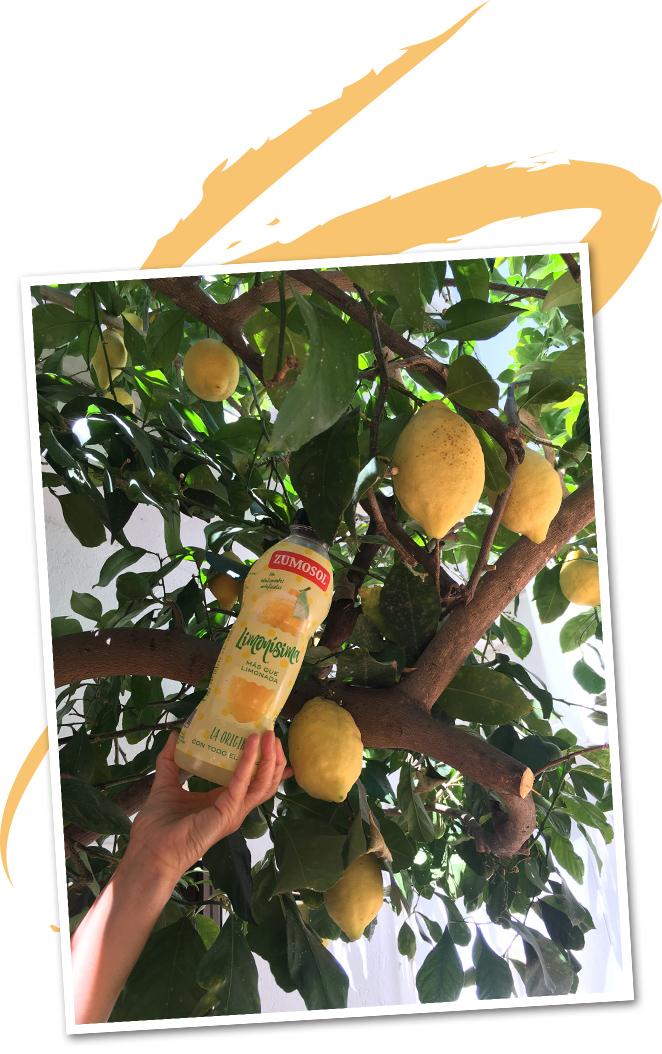 Limonísima, la nueva bebida de Zumosol