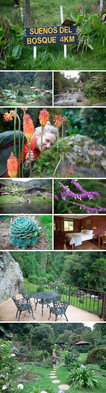 Trogon Lodge, San Gerardo de Dota