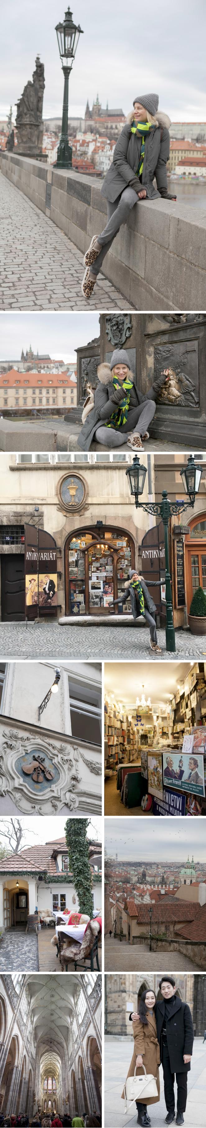 Barrio de Malastrana y el Castillo, Praga