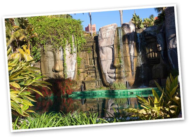 Mis pasos me llevan a la piscina Caras de Angkor: climatizada a 30ºC y de uso exclusivo para adultos, me hace sentir en la mismísima Camboya antes de que, ya en el restaurante Palapa, el sabor me traiga de vuelta a la bahía alicantina con una fritura con mojo verde, acompañada de fideuá de marisco.