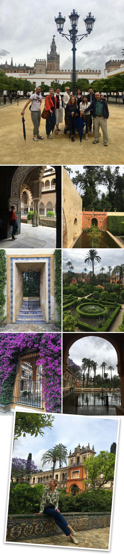Durante la tarde visitamos los Reales Alcázares y luego organizamos una cena muy especial en nuestra casa con un posterior flamenco con artistas de primera categoría.