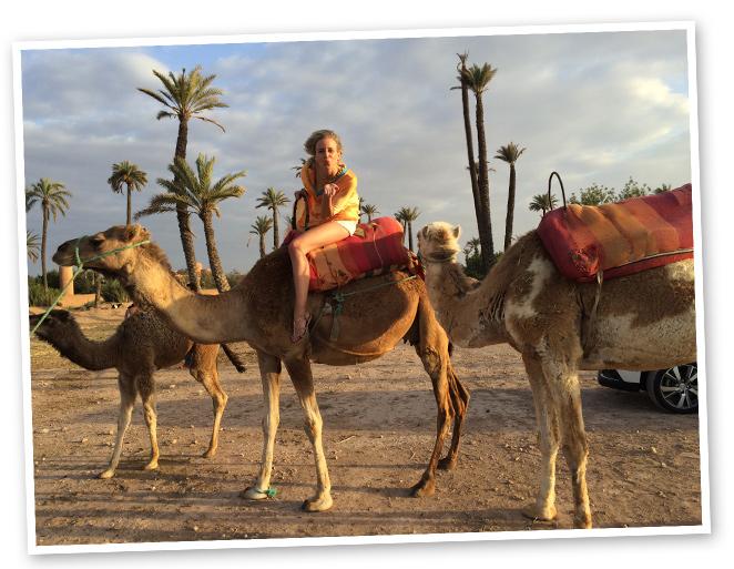 Dar un paseo a camello por El Palmeral.