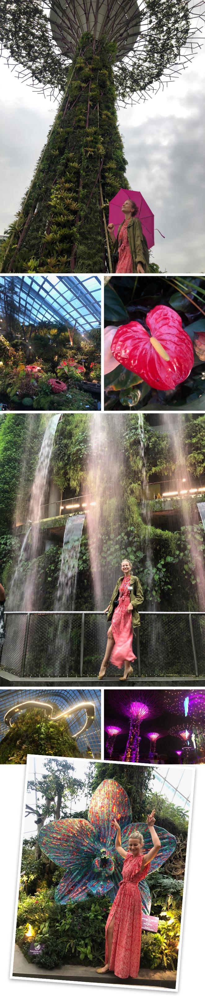 Jardines de la Bahíason los espectaculares jardines que se encuentran detrás del Marina Bays Sands, un espectacular edificio convertido en el más simbólico de la ciudad desde que se inaugurara en el 2014 y que alberga un hotel, centro comercial, centro de convenciones y el Museo de Arte y Ciencia, entre otras cosas. En la planta 57 (a 200 metros de altura) se encuentra su espectacular terraza en forma de barco donde hay un piscina infinita que solo pueden usar los clientes del hotel y desde donde se puede disfrutar de una de las mejores vistas de la ciudad. Los jardines se crearon en 2012 y tienen muchas zonas para visitar: los Supertrees, la pasarela OCBC Skyway, Cloud Forest (cuenta con una cascada de 35 metros de altura) y el Flower Dome. Esta especie de parque temático es un lugar al que es recomendable dedicar tiempo para visitar ya que es como un libro abierto en el que se puede aprender muchísimo sobre botánica. Imprescindible no perderse el espectáculo gratuito de luces y sonido Garden Rhapsody que tiene lugar todos los días en dos pases a las 19:45 y 20:45.