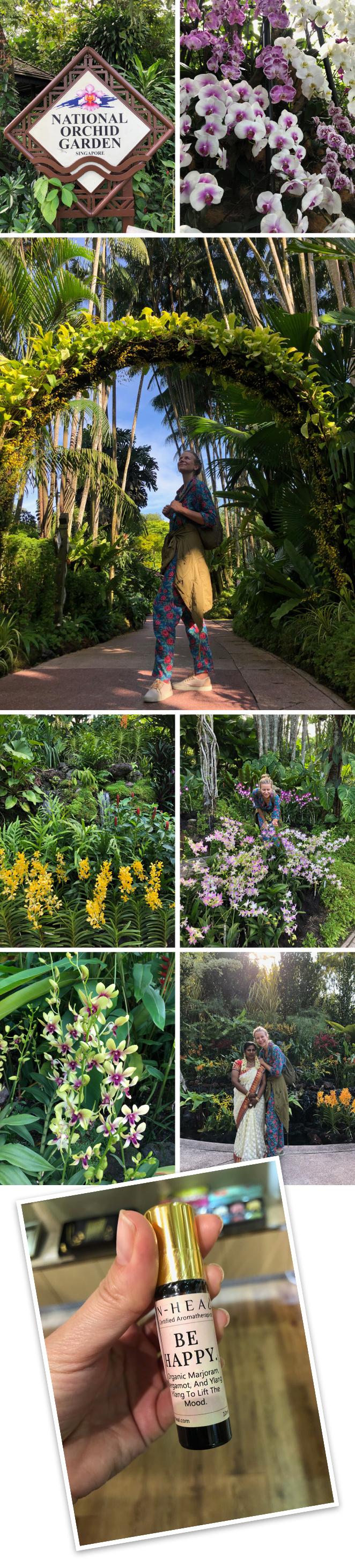 Los Jardines Botánicos y su jardín especial dedicado a la orquídeas. Es de los lugares más bonitos en los que he estado en mi vida. Si os gustan la plantas y, en concreto, las orquídeas, éste es el lugar ideal para poder admirar su belleza desde cerca. Hay una gran variedad de ellas, nunca vistas antes, con múltiples formas y colores.